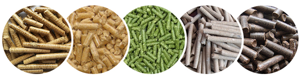 pellets made by flat die pellet mills