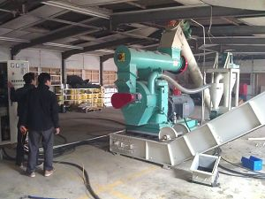 1t/h wood waste pelletizing system at Redruth of Cornwall UK