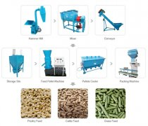 1 ton/h feed pellet plant in India